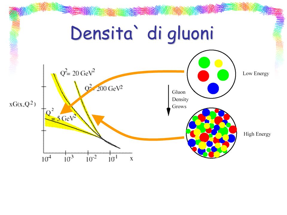Densita` di gluoni
