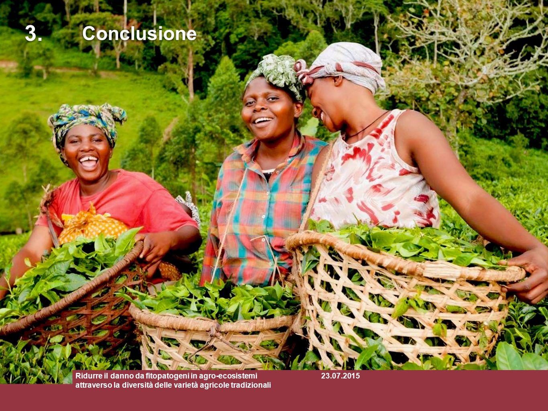 3. Conclusione. Ridurre il danno da fitopatogeni in agro-ecosistemi attraverso la diversità delle varietà agricole tradizionali.