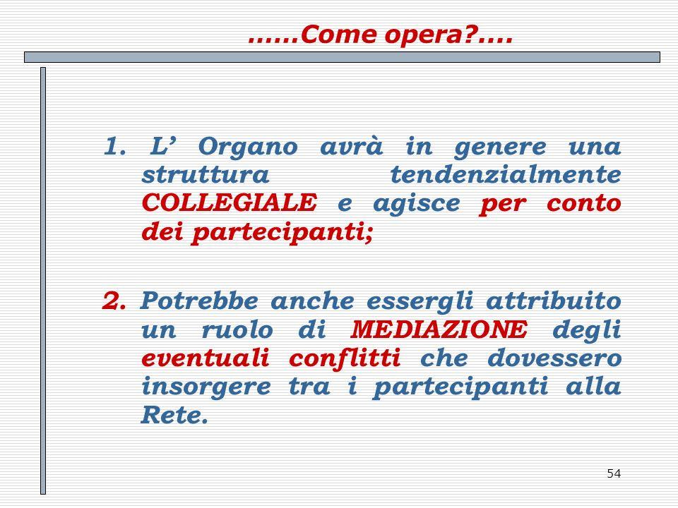 ……Come opera .... 1. L' Organo avrà in genere una struttura tendenzialmente COLLEGIALE e agisce per conto dei partecipanti;