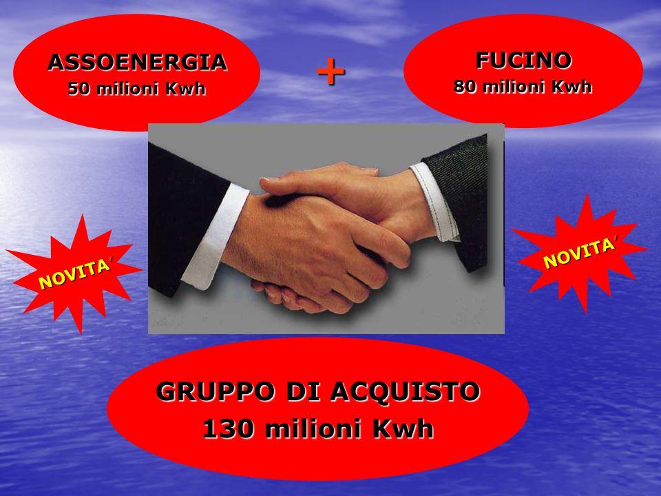 + GRUPPO DI ACQUISTO 130 milioni Kwh ASSOENERGIA FUCINO 50 milioni Kwh