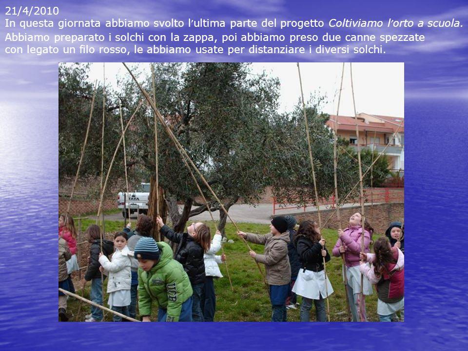 21/4/2010 In questa giornata abbiamo svolto l'ultima parte del progetto Coltiviamo l'orto a scuola.