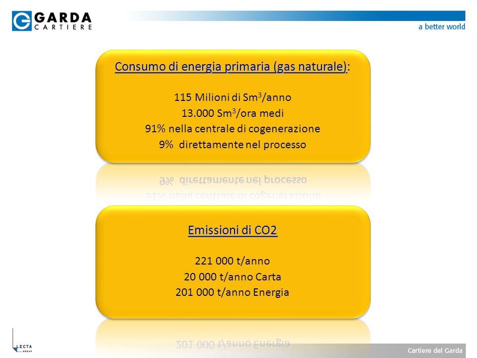 Consumo di energia primaria (gas naturale):
