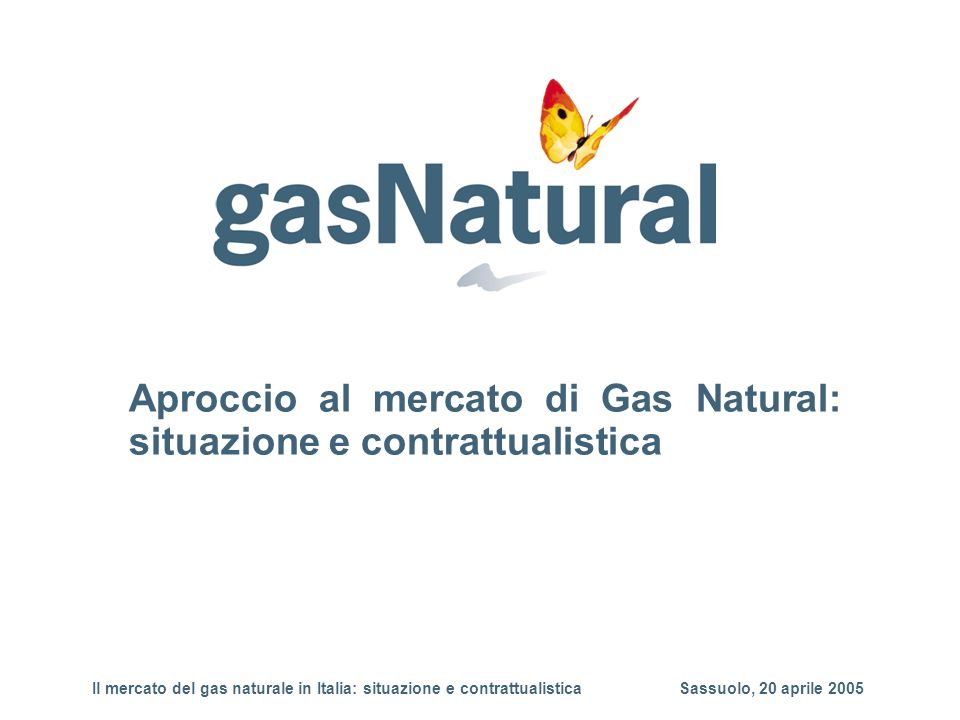 Aproccio al mercato di Gas Natural: situazione e contrattualistica