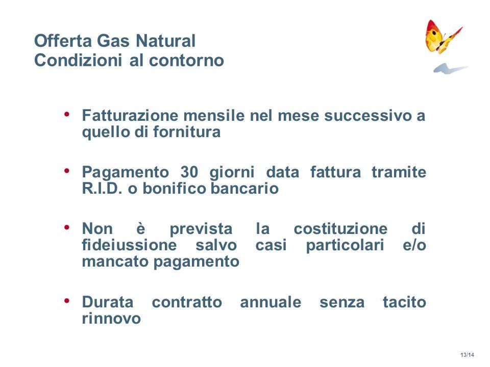 Offerta Gas Natural Condizioni al contorno