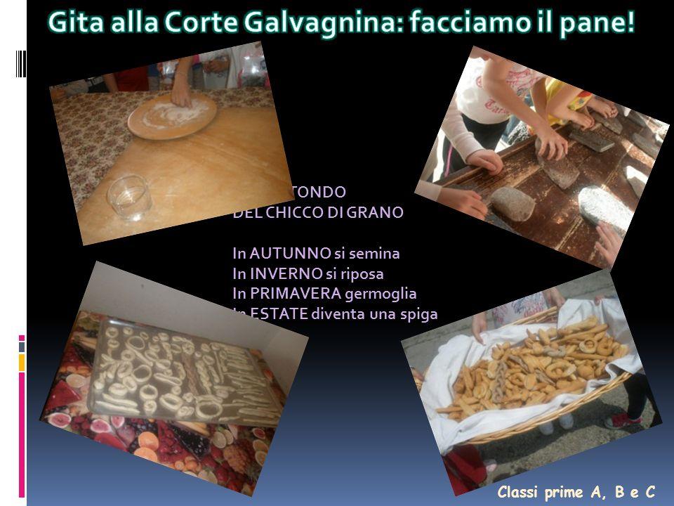 Gita alla Corte Galvagnina: facciamo il pane!