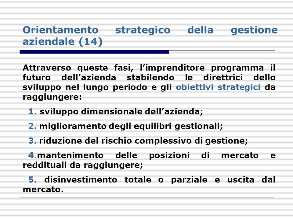 Orientamento strategico della gestione aziendale (14)