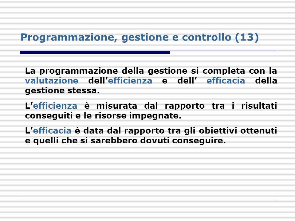 Programmazione, gestione e controllo (13)