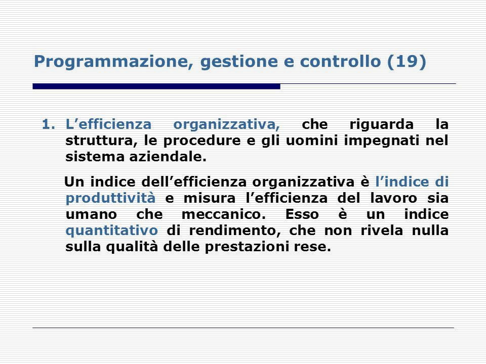 Programmazione, gestione e controllo (19)