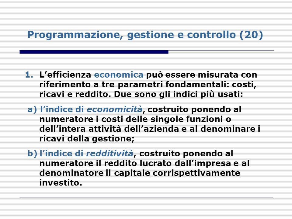 Programmazione, gestione e controllo (20)