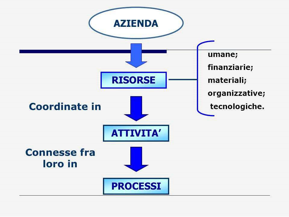 AZIENDA RISORSE Coordinate in ATTIVITA' Connesse fra loro in PROCESSI