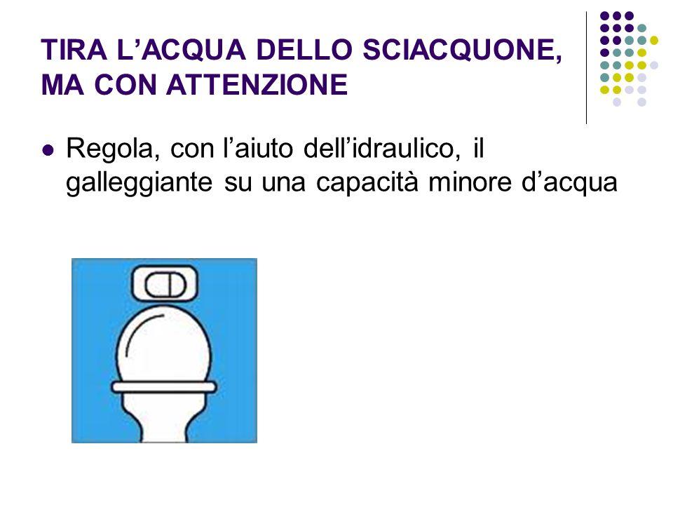 TIRA L'ACQUA DELLO SCIACQUONE, MA CON ATTENZIONE