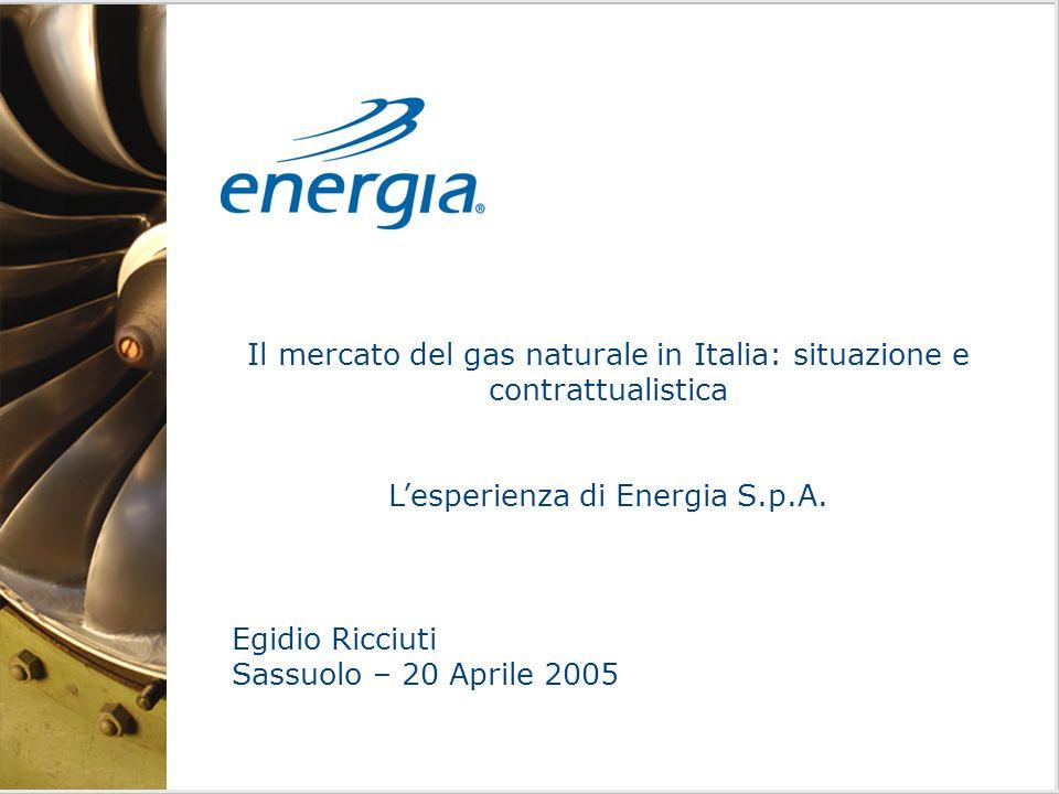 Il mercato del gas naturale in Italia: situazione e contrattualistica