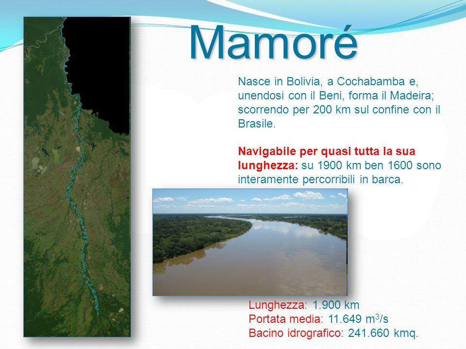 Mamoré Nasce in Bolivia, a Cochabamba e, unendosi con il Beni, forma il Madeira; scorrendo per 200 km sul confine con il Brasile.