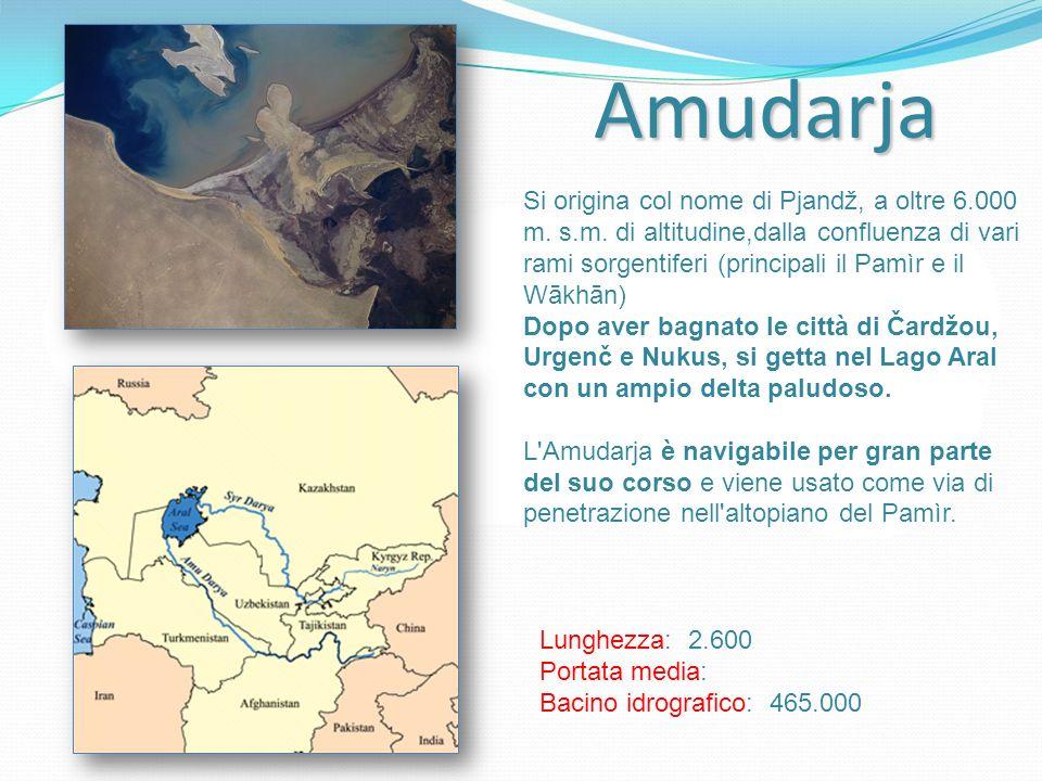 Amudarja