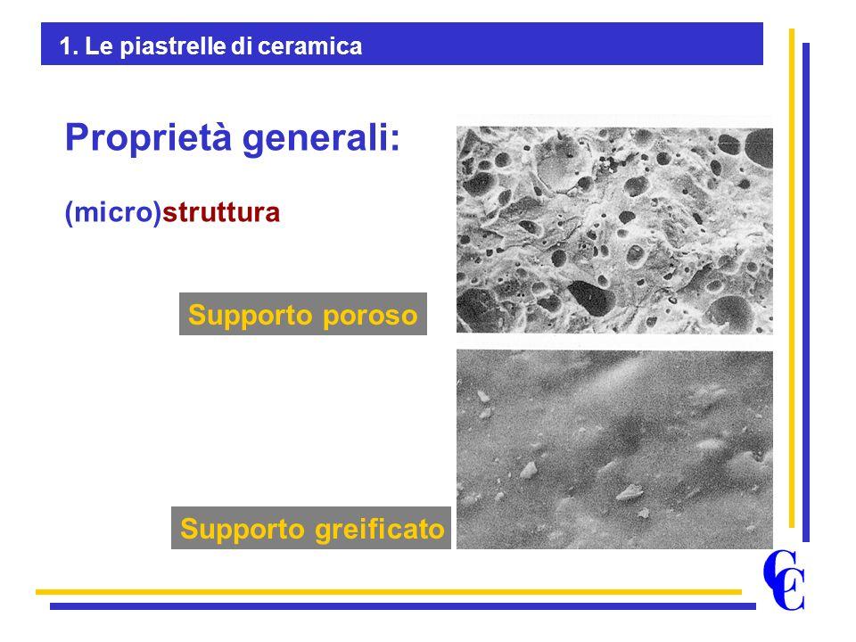 Proprietà generali: (micro)struttura Supporto poroso