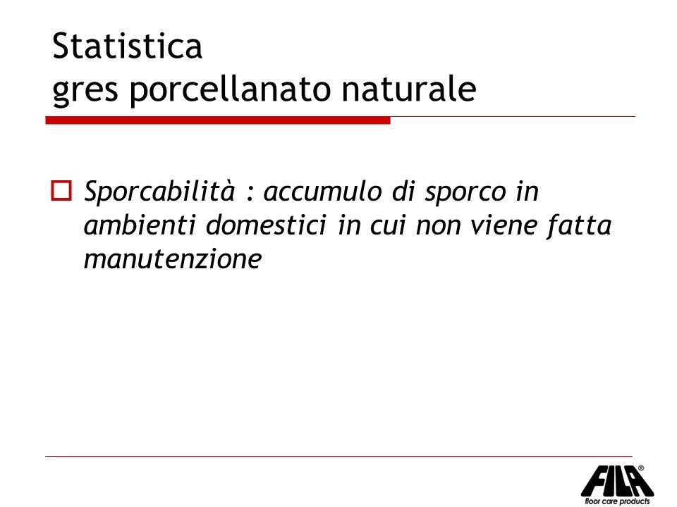 Statistica gres porcellanato naturale
