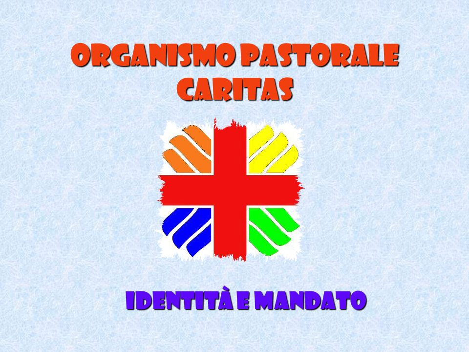 Organismo pastorale caritas