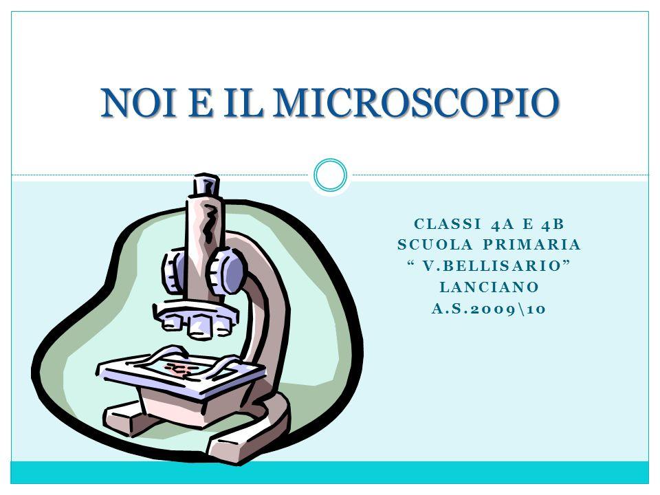 Classi 4A e 4B Scuola primaria V.Bellisario Lanciano a.s.2009\10
