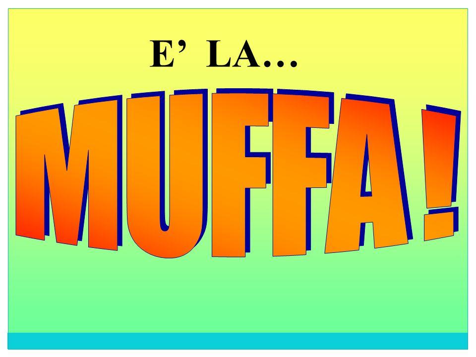 E' LA… M U F F A !