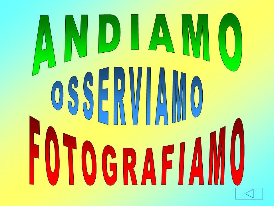ANDIAMO OSSERVIAMO FOTOGRAFIAMO