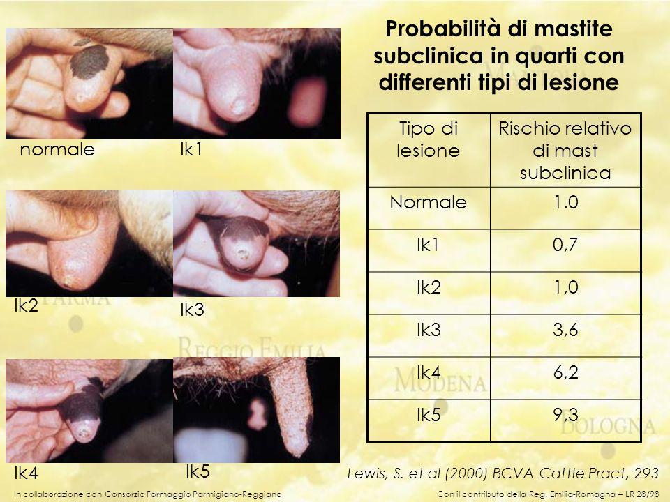 Probabilità di mastite subclinica in quarti con differenti tipi di lesione