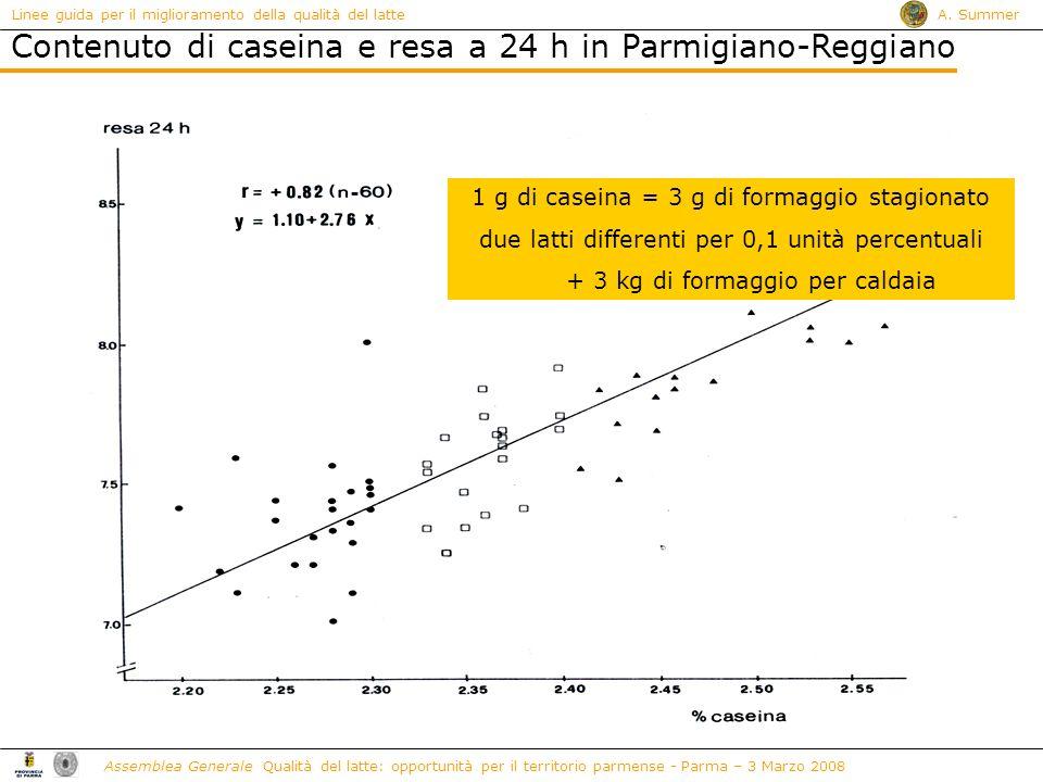 Contenuto di caseina e resa a 24 h in Parmigiano-Reggiano