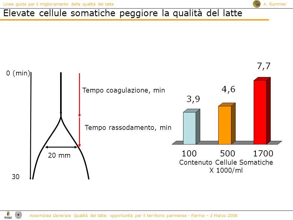 Contenuto Cellule Somatiche