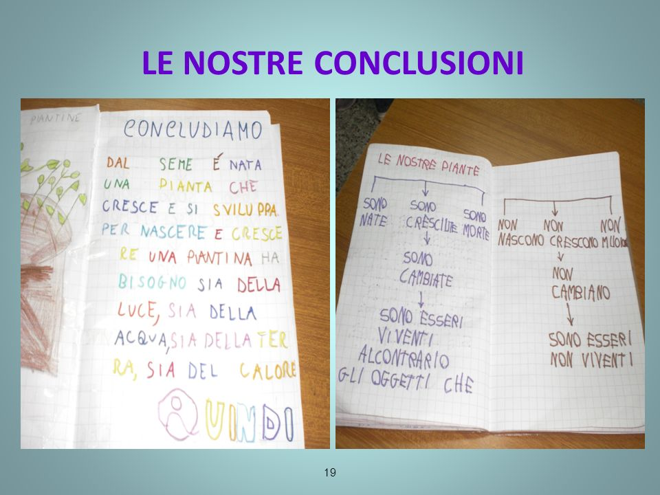 LE NOSTRE CONCLUSIONI 19