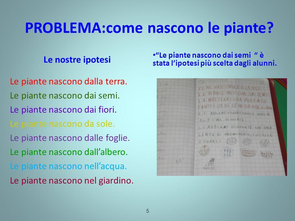 PROBLEMA:come nascono le piante