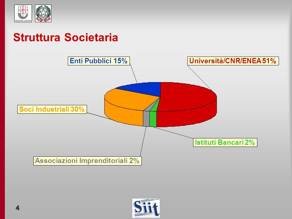 Struttura Societaria Enti Pubblici 15% Università/CNR/ENEA 51%