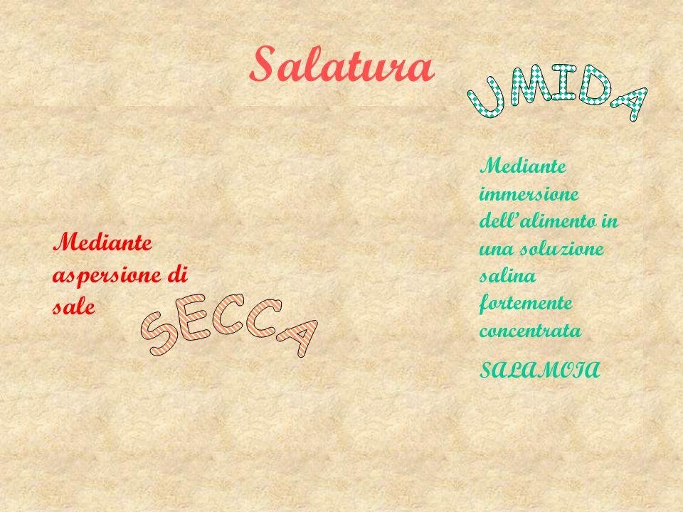 Salatura SECCA UMIDA Mediante aspersione di sale