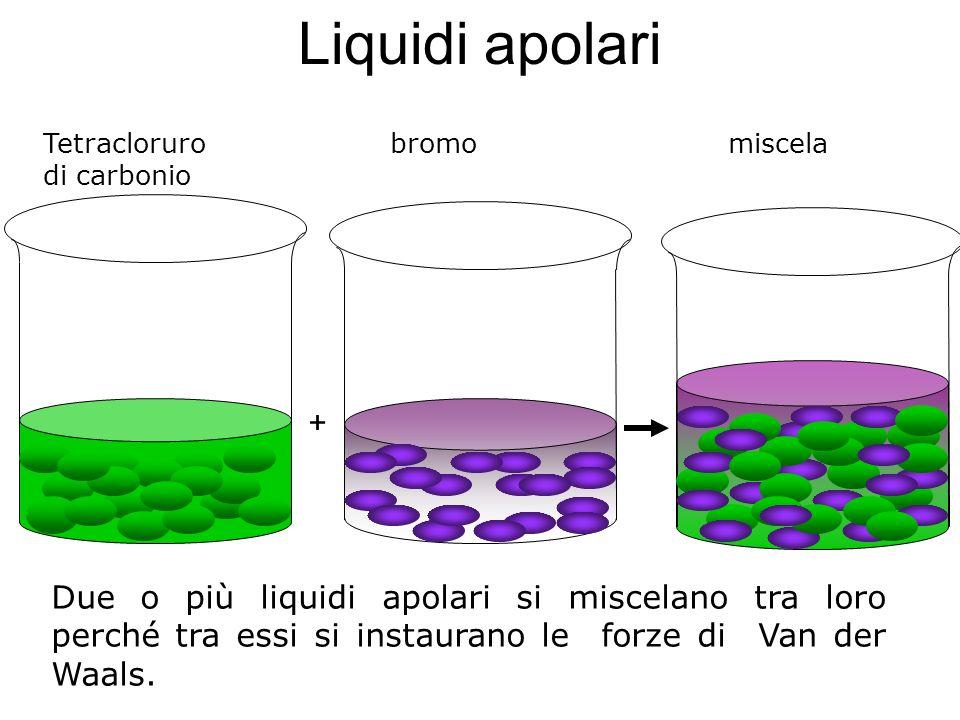 Liquidi apolari Tetracloruro bromo miscela. di carbonio.