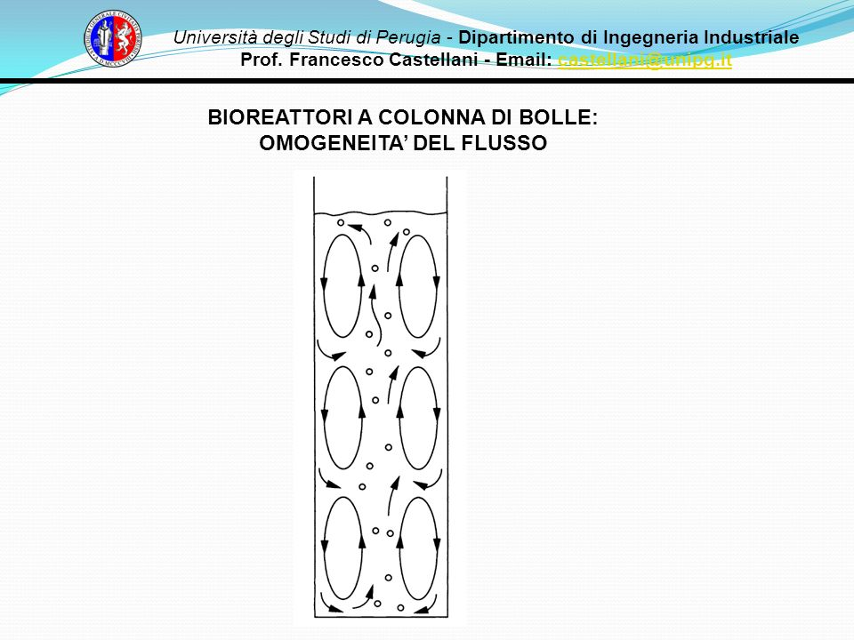 BIOREATTORI A COLONNA DI BOLLE: OMOGENEITA' DEL FLUSSO