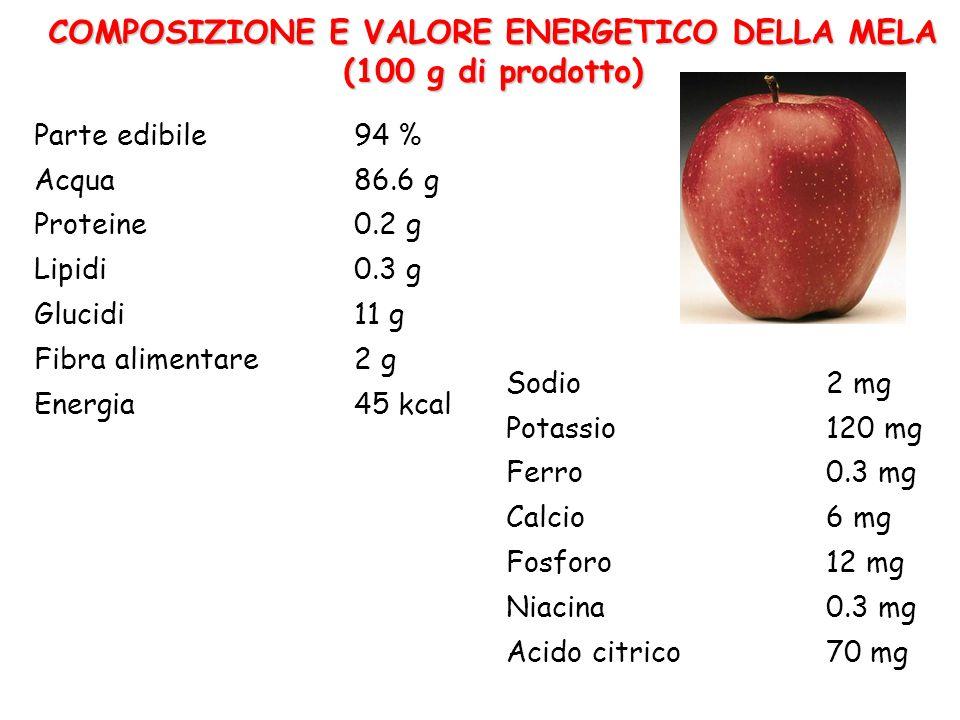 COMPOSIZIONE E VALORE ENERGETICO DELLA MELA (100 g di prodotto)