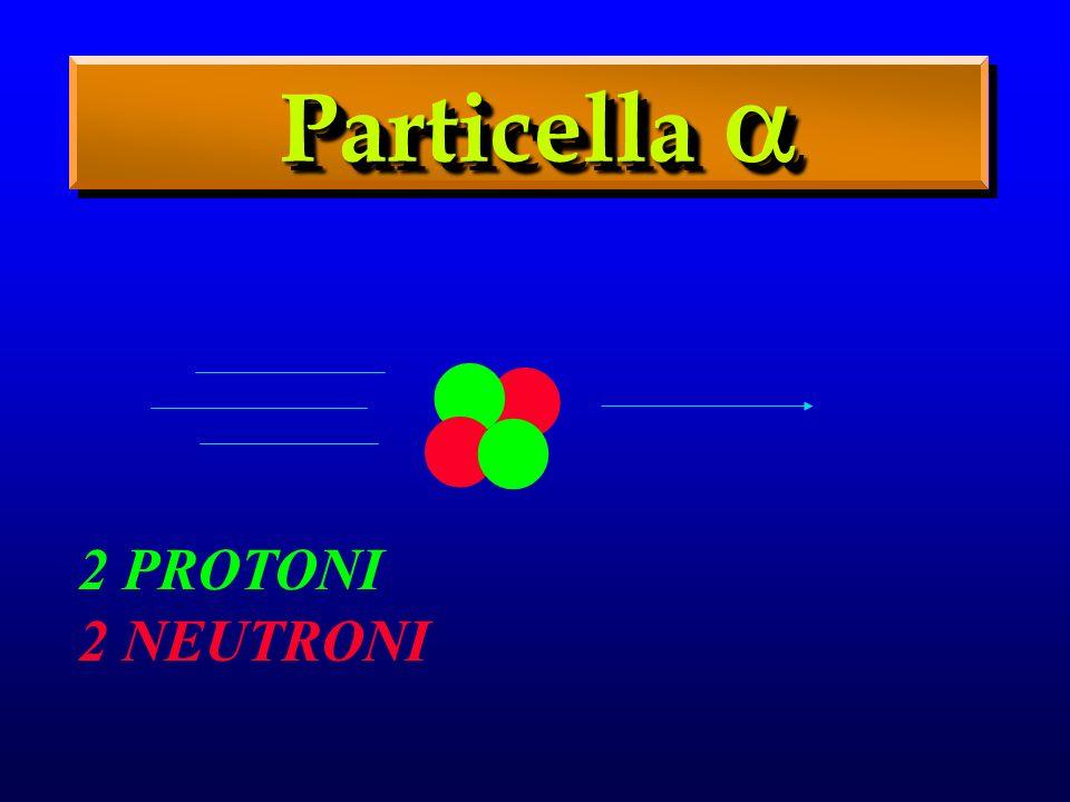 . Particella  2 PROTONI 2 NEUTRONI