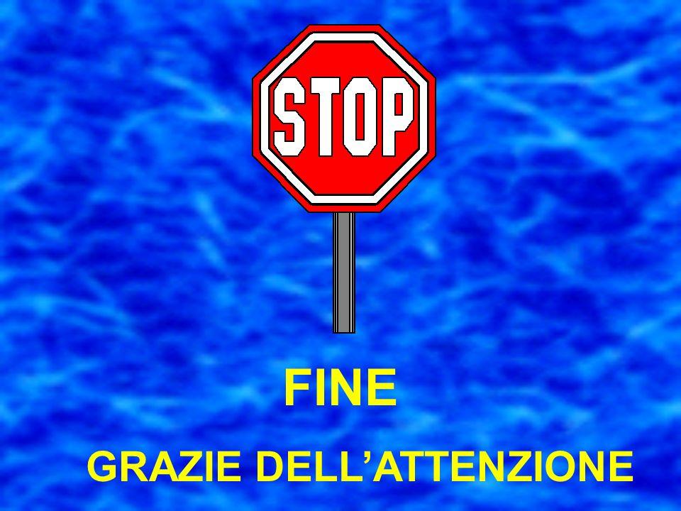 GRAZIE DELL'ATTENZIONE