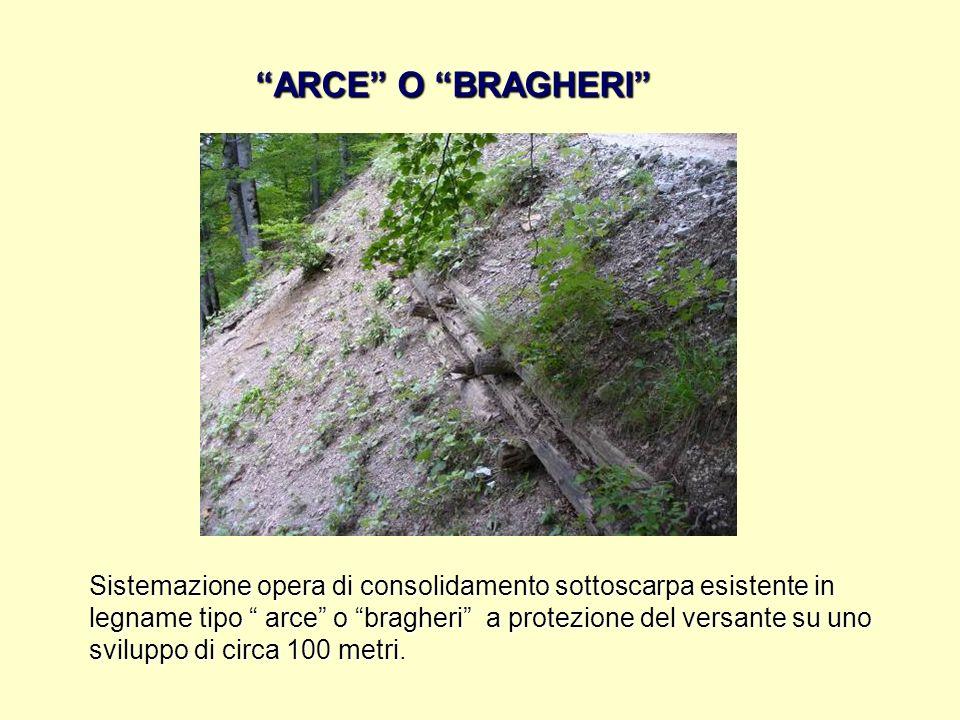 ARCE O BRAGHERI