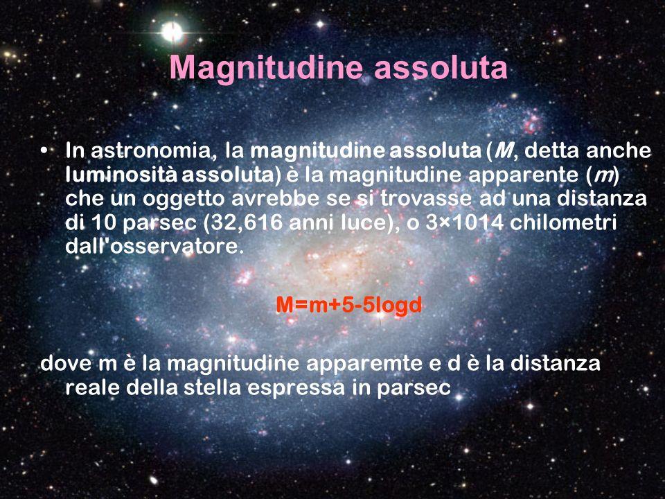 Magnitudine assoluta