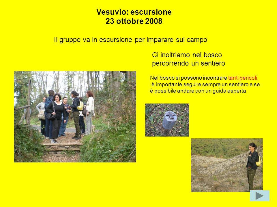 Vesuvio: escursione 23 ottobre 2008