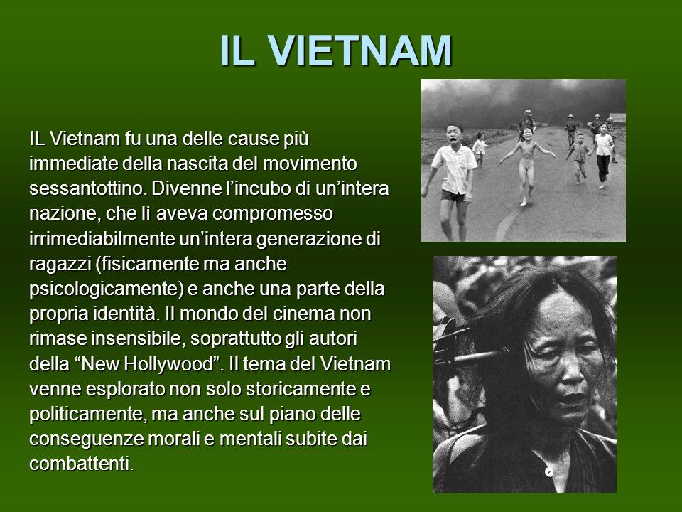 IL VIETNAM IL Vietnam fu una delle cause più