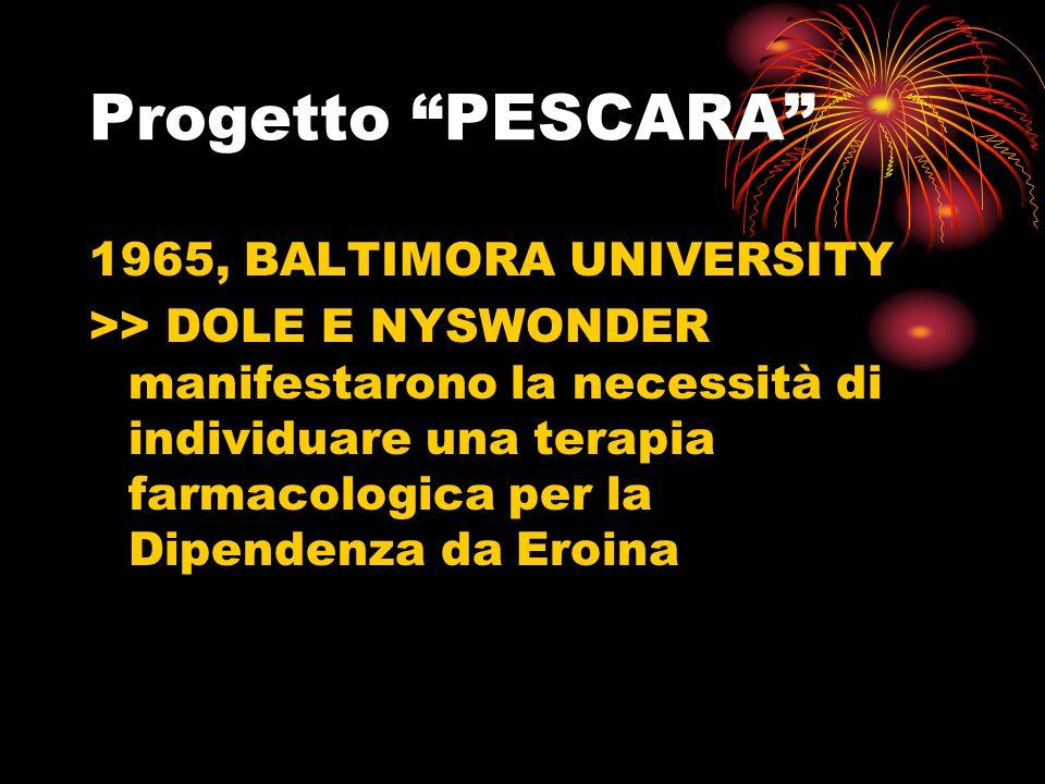 Progetto PESCARA 1965, BALTIMORA UNIVERSITY