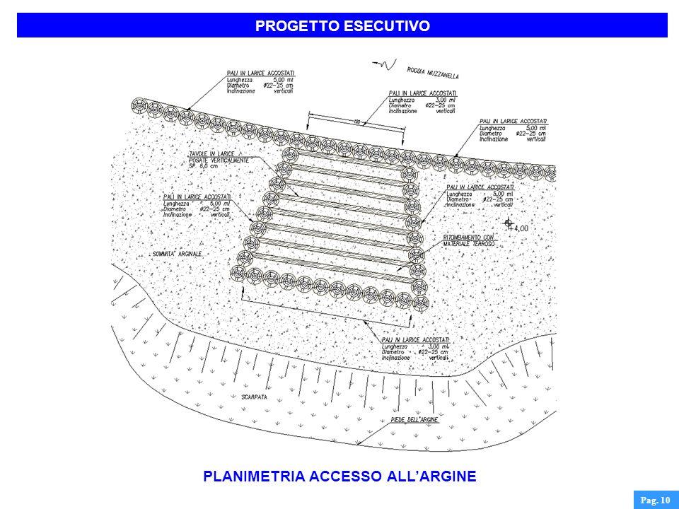 PLANIMETRIA ACCESSO ALL'ARGINE