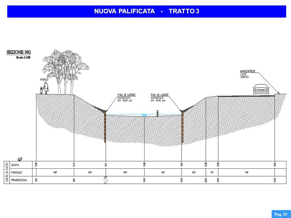 NUOVA PALIFICATA - TRATTO 3