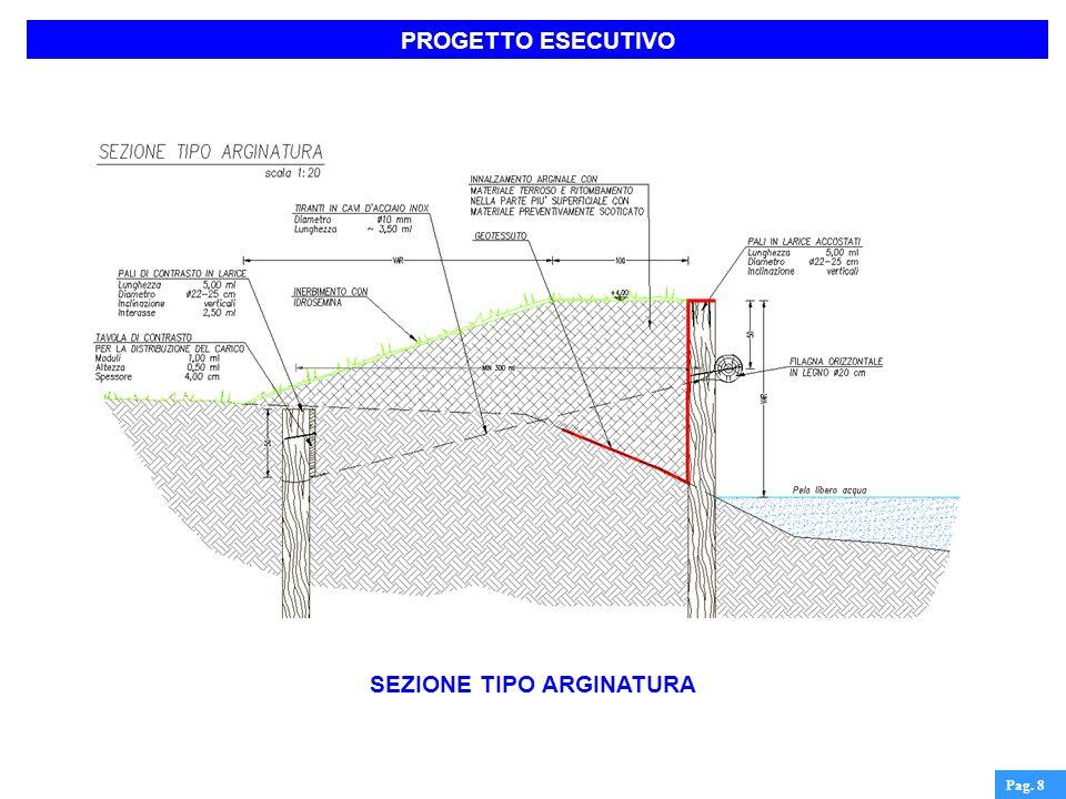 SEZIONE TIPO ARGINATURA