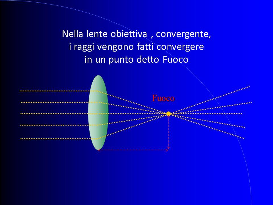 Nella lente obiettiva , convergente, i raggi vengono fatti convergere