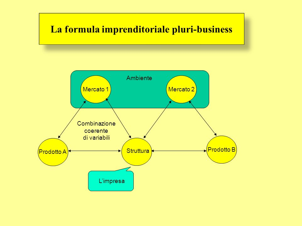 La formula imprenditoriale pluri-business