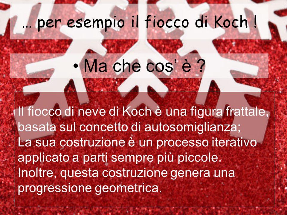 … per esempio il fiocco di Koch !