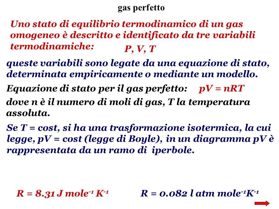 gas perfetto Uno stato di equilibrio termodinamico di un gas omogeneo è descritto e identificato da tre variabili termodinamiche: