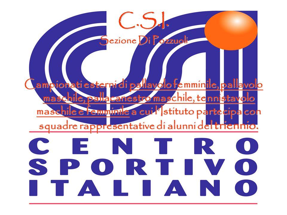C.S.I. Sezione Di Pozzuoli.