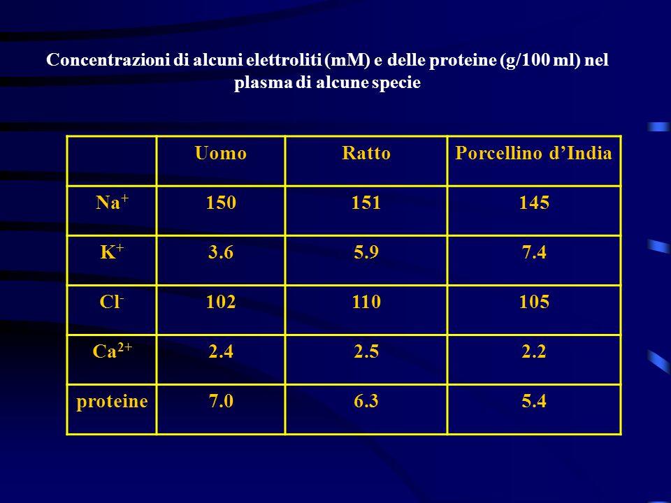 Uomo Ratto Porcellino d'India Na+ 150 151 145 K+ 3.6 5.9 7.4 Cl- 102